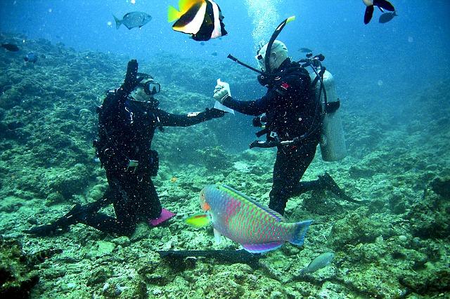 Pojištění pro potápění v zahraničí